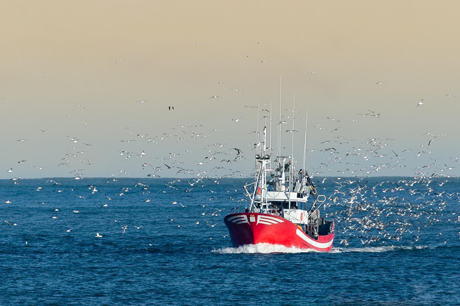 Solutions mer navire de pêche